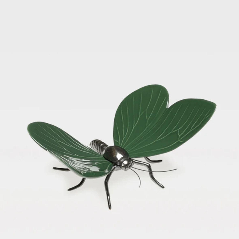 borboleta_1