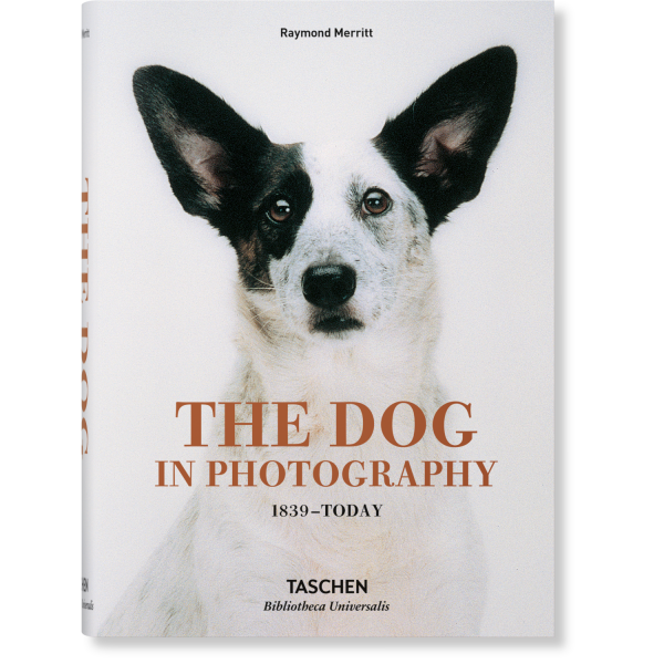 THE DOG IN PHOTOGRAPHY: 1839–Today